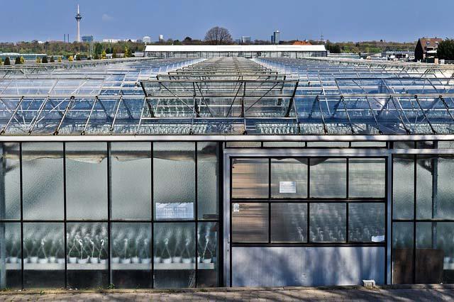 Was kostet das Reinigen eines Glasdaches?