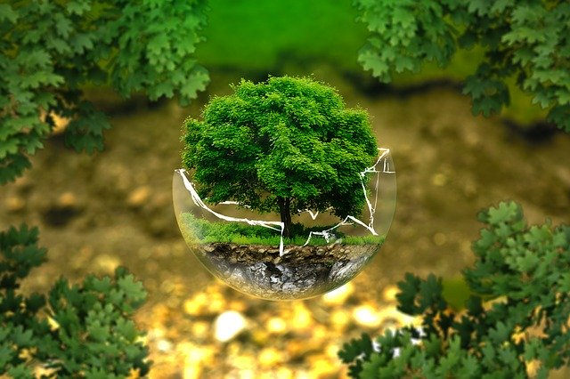 Umweltschutz in unserem Unternehmen