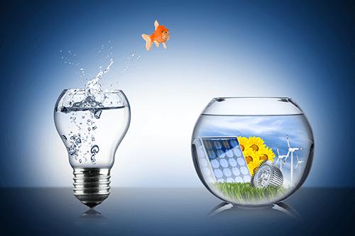 Papierlose Abrechnung und Buchhaltung als Beitrag zum Umweltschutz