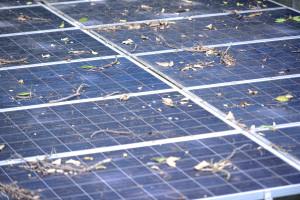 Ertragsverlust durch verschmutze PV-Anlage